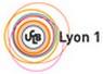 Logo Univ Lyon